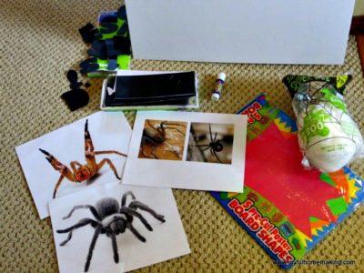 Science Project for Kids, Joyful Homemaking