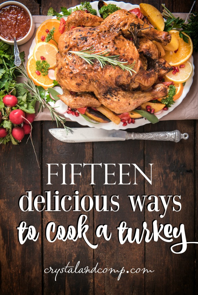15-ways-to-cook-a-turkey-687x1024