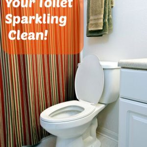 How to Keep Your Toilet Cleaner