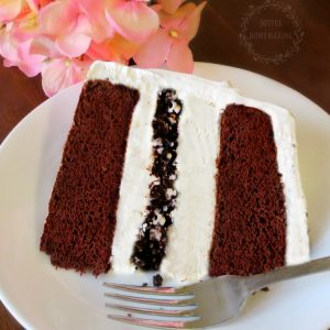 Chocolate and Vanilla Ice-Cream Cake