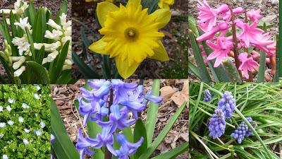 , Menu Plan for the Week of March 19th, Joyful Homemaking