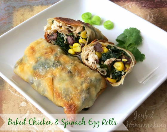 Southwestern Chicken Egg Rolls2