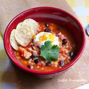 Chicken, Black Bean & Salsa Soup, Joyful Homemaking