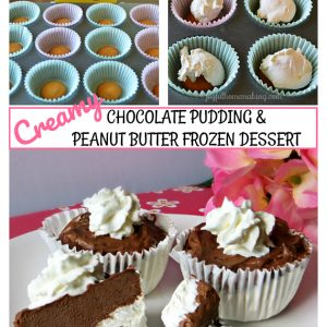 Chocolate Peanut Butter Frozen Dessert, Joyful Homemaking