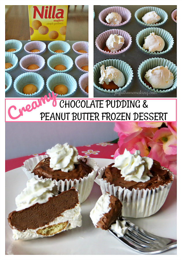 Chocolate Peanut Butter Frozen Dessert