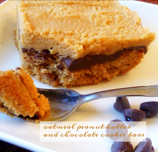 chocolate-peanut-butter-oatmeal-bars7