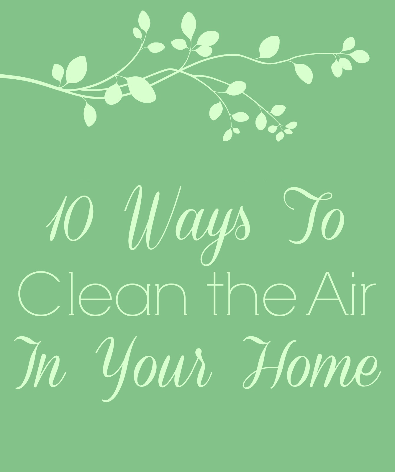 10 Ways to Clean the Air in Your Home