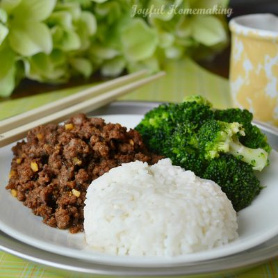 Amazing Korean Beef Recipe & Great Flavoring for Chicken Too
