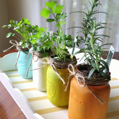 Kitchen Herb Garden in Mason Jars