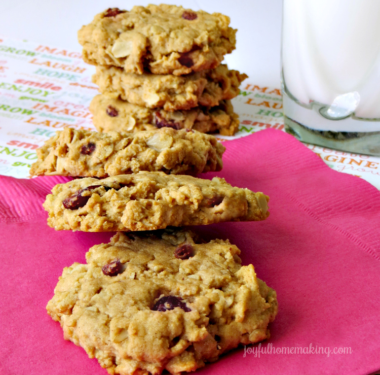 Breakfast Cookies with Whole Grain Flour, Oats, Peanut Butter and Cranberries