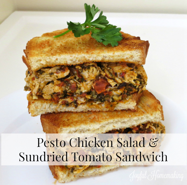 pesto chicken and sundried tomato sandwich2